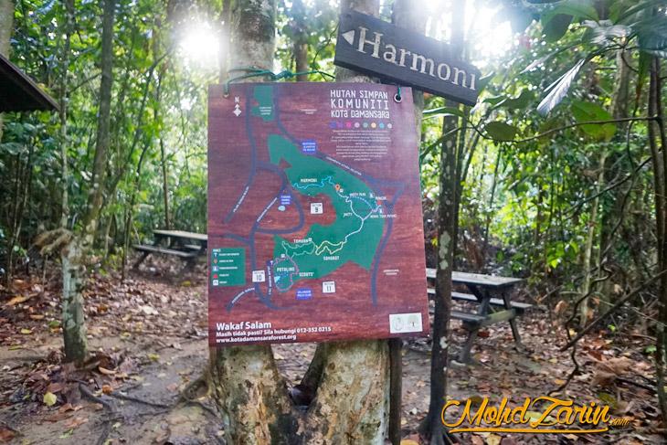 Bukit Kota Damansara Community Forest